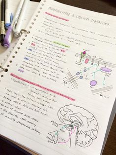 ||| student, university, college, notes, notespiration