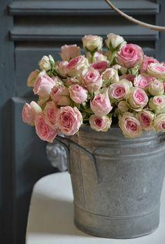 Rose tendre... - les pt'its coeurs de marie