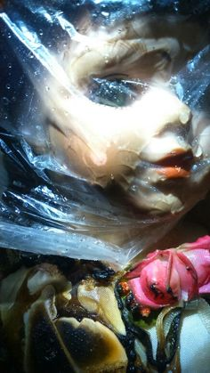 Doll soaked in water and wrapped in plastic (art coursework)
