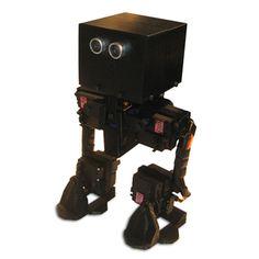 FOBO bipedal walking robot