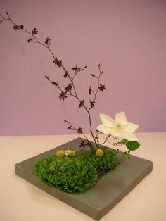 七夕.ikebana