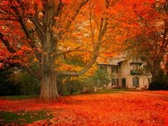 I LOVE this area of MA!!! Norman Rockwell Museum, Stockbridge, Massachusetts  photo via justbesplendid