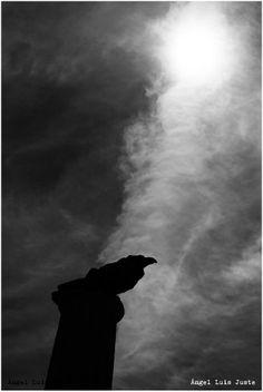 El cuervo. Alcañiz 2014 © Ángel Luis Juste www.fotografiadecallejon.com