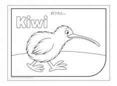 Children can have fun colouring in this picture of the kiwi bird, which has become a symbol of New Zealand. Waitangi Day, Art For Kids, Crafts For Kids, International Craft, Bird Template, Kiwi Bird, Holiday Program, Bird Coloring Pages, Celebration Around The World