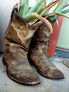 As a former Texas Hill Country resident, I have a major soft spot in my heart for this utterly charming area of the country, and Juniper Hills Farm, located in Cowboy Up, Cowboy Boots, Old Boots, Farm Photo, Texas Hill Country, Slippers, Home Photo, Party Fashion, Popsugar