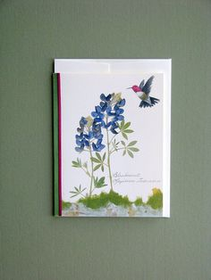 Bluebonnets with hummingbird, wildflowers, Texas state flower, greeting card, no. 1102 via Etsy