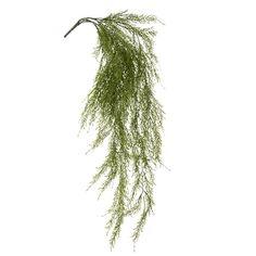 Jupiter hanging bush, 35'' Green Plants, Artificial Plants, Houseplants, Decoration, Herbs, Amp, Products, Decor, Fake Plants