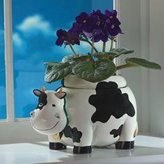 GrowAnimal Cow Planter
