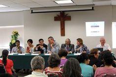 El panel del DIM2012