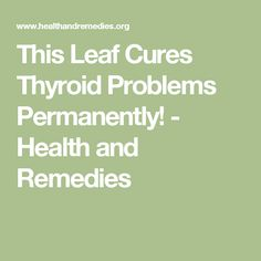 This Leaf Cures Thyroid Problems Permanently! - Health and Remedies Thyroid Cure, Types Of Thyroid, Thyroid Diet, Thyroid Issues, Thyroid Disease, Thyroid Problems, Thyroid Health, Heart Disease, Thyroid Supplements
