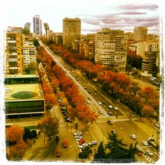 Paseo de la Castellana, Madrid San Bernardo, Skyline, Summer Months, Spain Travel, Dolores Park, City, World, Dental, Outdoor