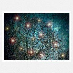 Nature Photography, dark blue, night, fairies, woodlands, whimsical, stars, The Stargazers Fantasy fine art photography print 8x12. $28.00, via Etsy.