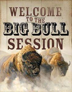 Tin Sign   Buffalo Metal Tin Sign Welcome To The Big Bull Session