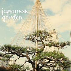estructura en un árbol de un #jardín japonés http://espaciosvivos.es/el-alma-de-los-jardines-japoneses/