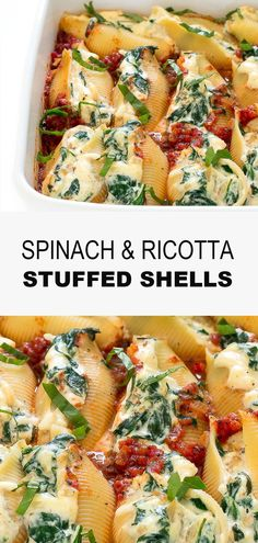 Spinach and Ricotta Stuffed Shells - Chef Savvy - These tender jumbo pasta shells are stuffed with ricotta, parmesan cheese, mozzarella cheese, spina - Spinach Stuffed Shells, Stuffed Shells Recipe, Jumbo Shell Recipes, Vegetarian Recipes, Cooking Recipes, Vegetarian Diets, Meat Recipes, Yummy Recipes, Queso Ricotta