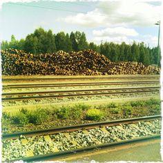 Kitee Railroad Tracks, Finland, Road Trip, Landscape, Scenery, Road Trips, Corner Landscaping, Train Tracks