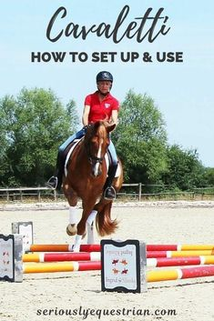 Cavaletti: How to set up and use? - Seriously Equestrian
