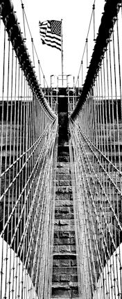 NYC Street New York Photography, Street Photography, Brooklyn Bridge, New York City, Nyc, Travel, Pictures, Photo Art, Viajes