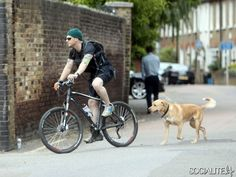 Tom Hardy seen training while wearing a weight vest during a bike ride along the river Thames, with his trusty pet Labrador. The Batman star stopped for a chat with another keen bodybuilder in London, UK. May 31, 2013.