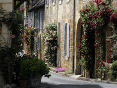 Flower Bedecked Street, St. Cyprien, Dordogne, France, Europe ...