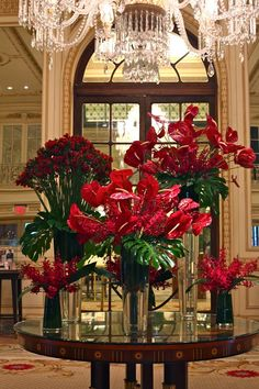 Vibrantly wild and exotic red blooms decorate the main lobby of The Plaza. Guests will be amazed with these gorgeous arrangements composed of lipstick red colored Anthuriums, crimson Mokara Orchids and ruby hued Astromerias.