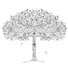 Image Result For Secret Garden Coloring Page