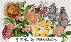 crazychuchu PNG 51 by crazychuchu.deviantart.com on @DeviantArt