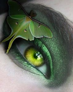 Luna Moth and Green Eye, I would take off the moth. looking for an idea for St. Pretty Eyes, Cool Eyes, Beautiful Eyes, Pretty Art, Pretty Green, Butterfly Eyes, Green Butterfly, Butterflies, Butterfly Kisses