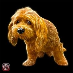 Lhasa Apso dog art by james ahn 5331 | http://rateitart.com