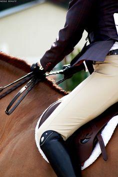 Equestrian #horse #rider