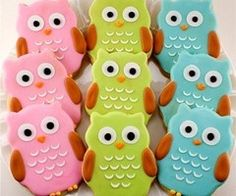 owls for owls