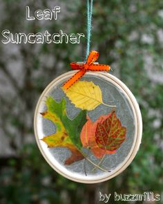 Leaf Suncatcher, simple project for toddlers/preschoolers,   by buzzmills...