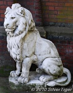 seated lion - Google Search