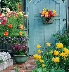 Flowers in various containers...love this courtyard!