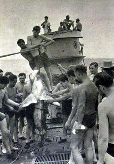 Shirtless German submariners hauling a shark on to the deck of the U-123 - 1942
