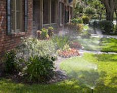 Professional Sprinkler Installation and Repair in Frisco, Texas by Texas Waterboys, Inc.
