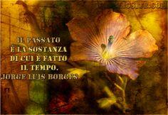 Jorge Luis Borges - Il passato è la sostanza .. Il passato è la sostanza di cui è fatto il tempo.  Jorge Luis Borges  #Borges, #tempo, #passato, #liosite, #citazioniItaliane, #frasibelle, #sensodellavita, #ItalianQuotes, #perledisaggezza, #perledacondividere, #GraphTag, #ImmaginiParlanti, #citazionifotografiche,