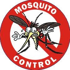 Natural homemade mosquito spray. Very useful when summer approaches and mosquito season comes.