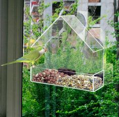 Window  bird feeders  CLEAR GLASS WINDOW VIEWING BIRD FEEDER HOTEL TABLE SEED PEANUT HANGING SUCTION