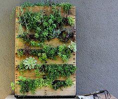 diy vertical garden, diy, gardening