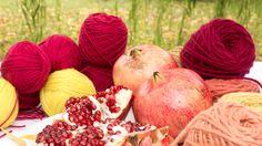 """I colori della melagrana. Il frutto """"magico"""" dell'autunno sacro alladea madre, simbolo dell'eterno ritornare, della fertilità, … Foto di Massimo Camplone"""