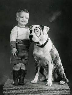 ¿Os acordáis de Petey? #perro #pelicula #famoso www.hostaldog.com