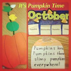 Harvest time means pumpkin time