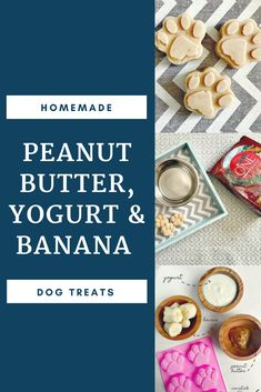 A balanced diet for our dog with Purina and PetSmart and an easy recipe for homemade dog treats. #WhatFuelsRight AD