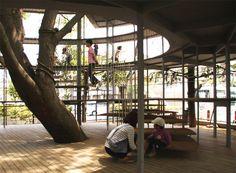 Ring around a tree, a kindergarten built around a tree in Tokyo, Japan