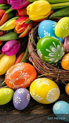 Easter Eggs Tulips On Wooden Planks Stock Photo (Edit Now) 382196482 Ostern Wallpaper, Easter Egg Designs, Easter Wishes, Ukrainian Easter Eggs, Diy Ostern, Easter Pictures, Easter Parade, Egg Art, Egg Decorating