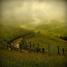 follow the fences      (via Sweetpea Path on imgfave)