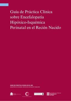 Guía de práctica clínica sobre Encefalopatía hipóxico-isquémica perinatal en recién nacido