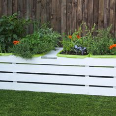 Garden Planter Standard