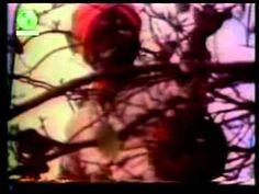 العلم والإيمان د/مصطفى محمود..الهندوس 2 (كامله)